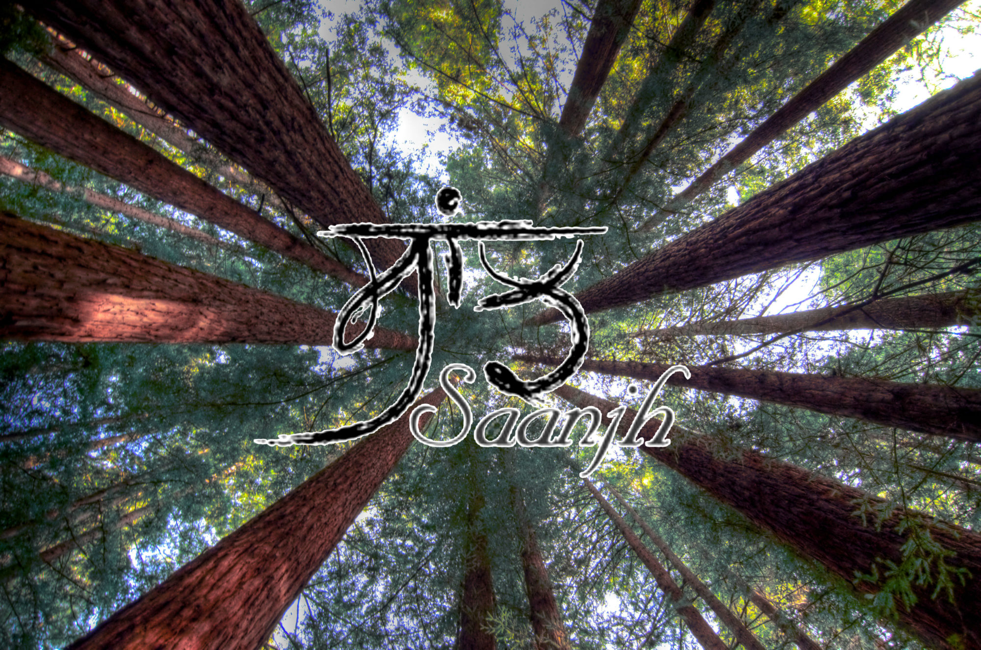 Sikhi in the Redwoods