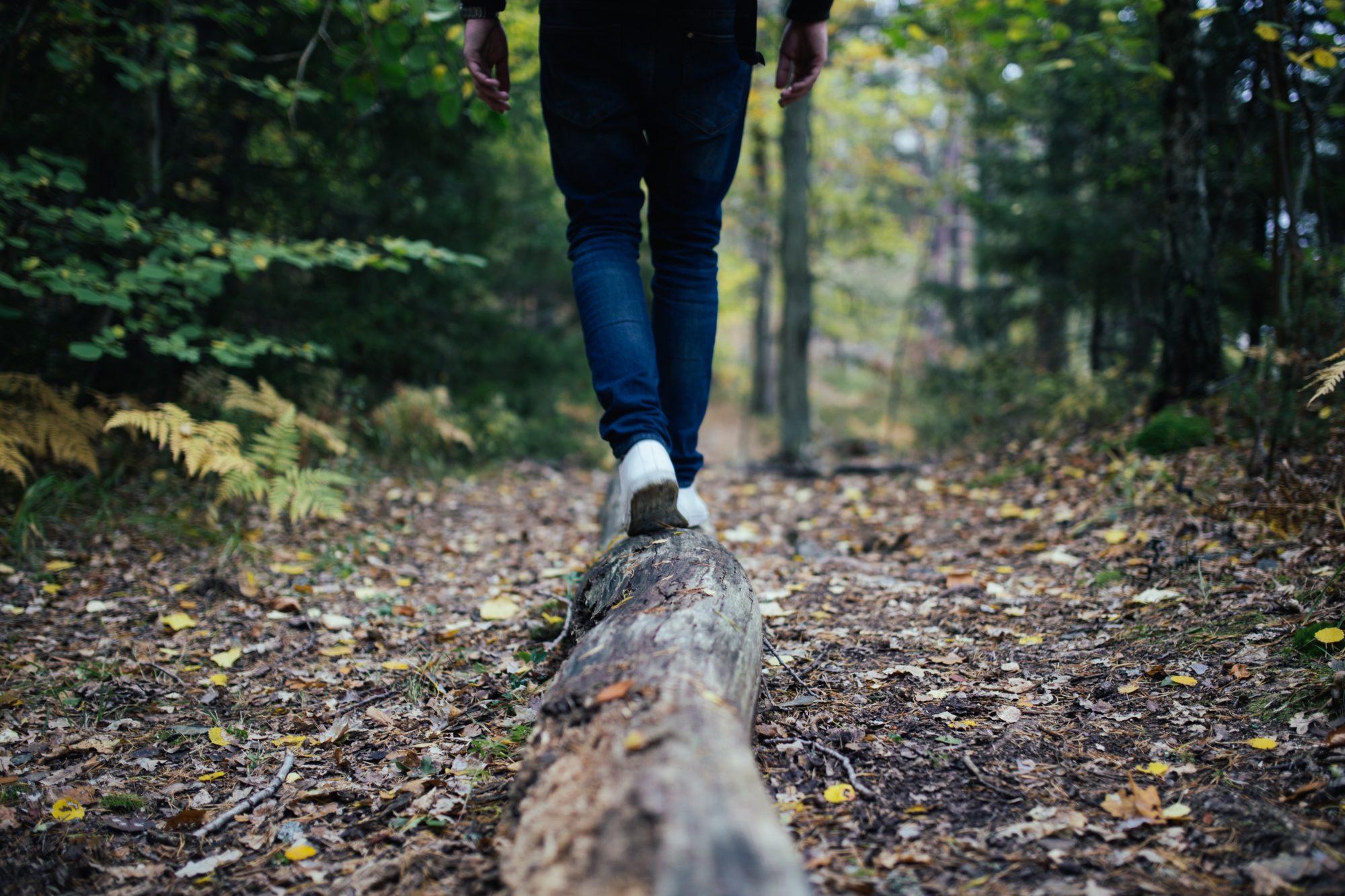 What is hukam? How do I walk on Guru's path?